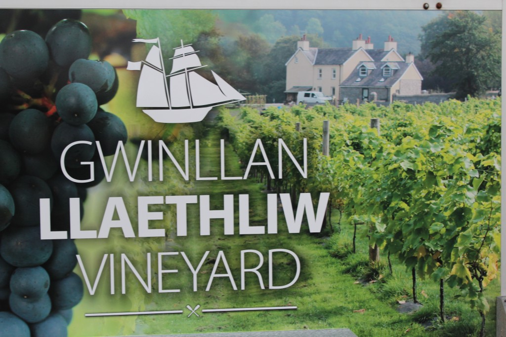 Llaethliw is a new kid on the British wine block